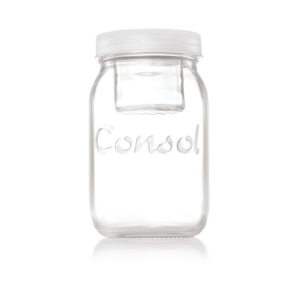 White Jar in a Jar